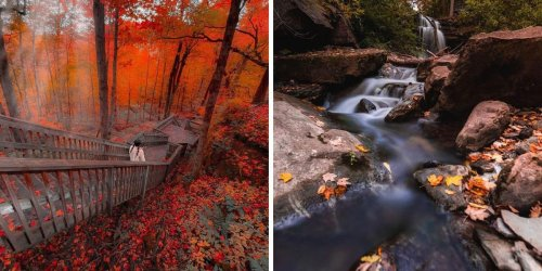 7 Forest Hikes Near Toronto Where You Can Wander Beneath A Canopy Of Red & Orange