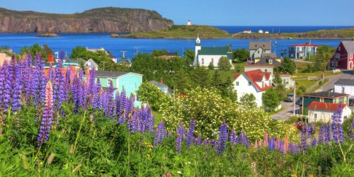 This Tiny Newfoundland Town Was Voted One Of The Best Spots In Canada & These Pics Prove It