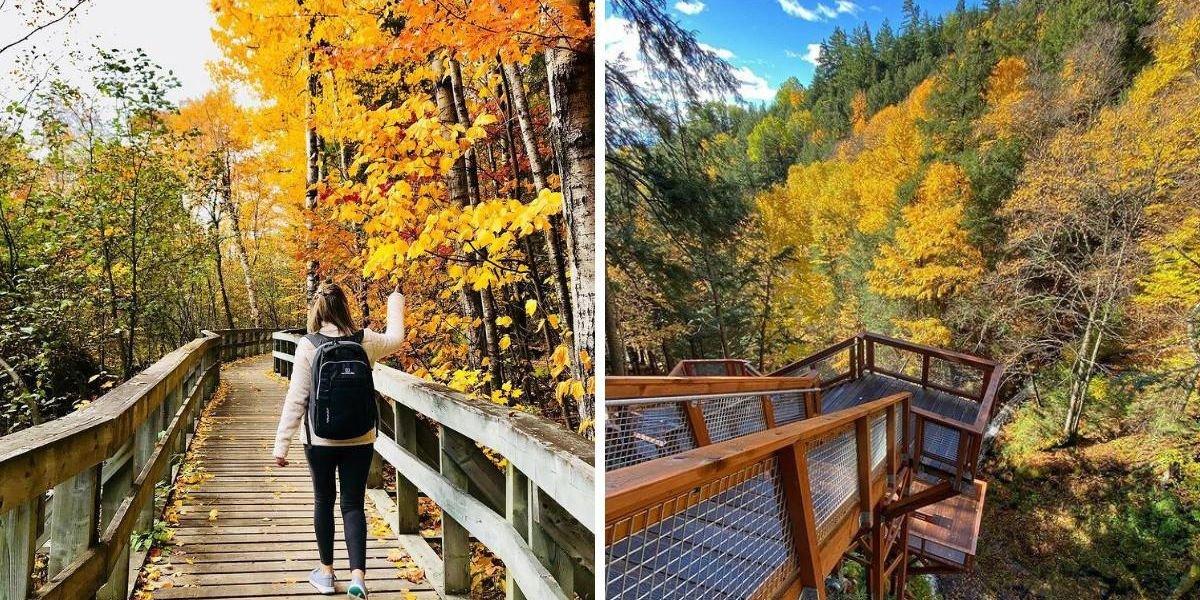 Ce « hike » avec des passerelles près de Québec te plongera directement dans l'automne