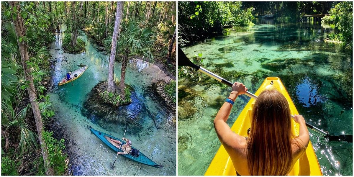 You Will Feel Like You're In The Amazon While Kayaking Down This 8.5 Mile River In Florida