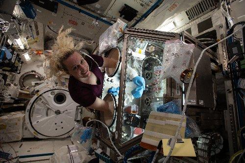 NASA Astronaut Kate Rubins' Scientific Journey Aboard the ISS