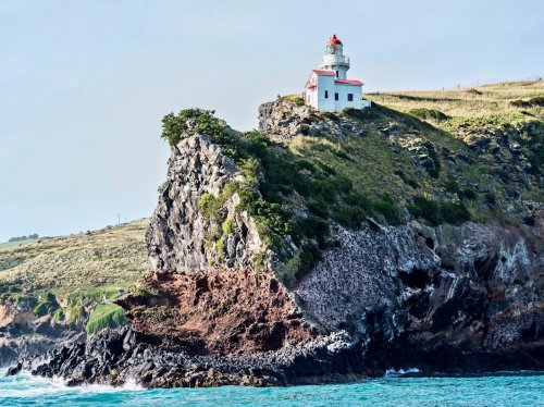 The inside guide to Dunedin, New Zealand's lesser-known adventure hotspot