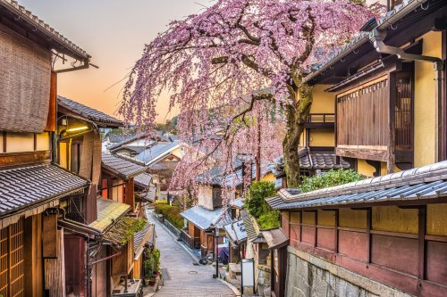 The inside guide to Kyoto's quieter side, from teahouses to temples