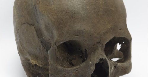 Prehistoria cover image
