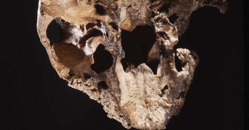 Descubiertos los restos de nueve neandertales en una gruta de Italia