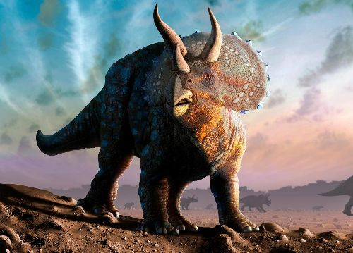Why Triceratops, a prehistoric herbivore, looked so fierce