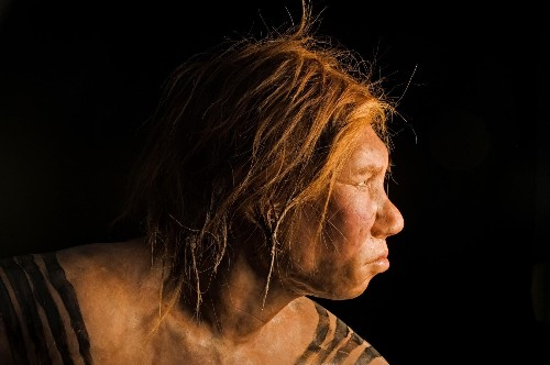 You may have more Neanderthal DNA than you think