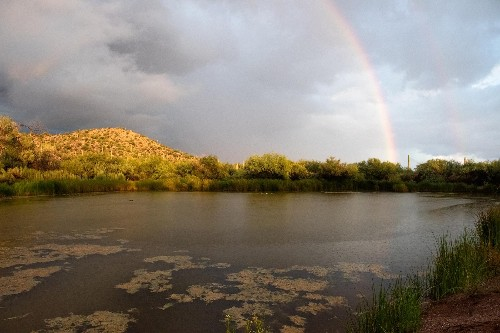 Sacred Arizona spring drying up as border wall construction continues