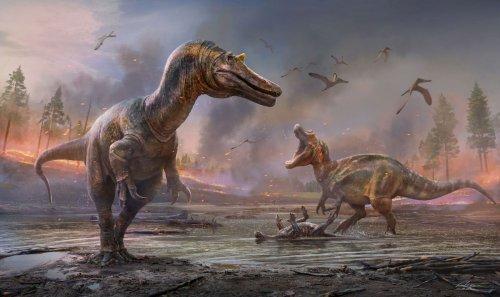 Höllenreiher: Die Gruppe der Spinosauridae bekommt Zuwachs
