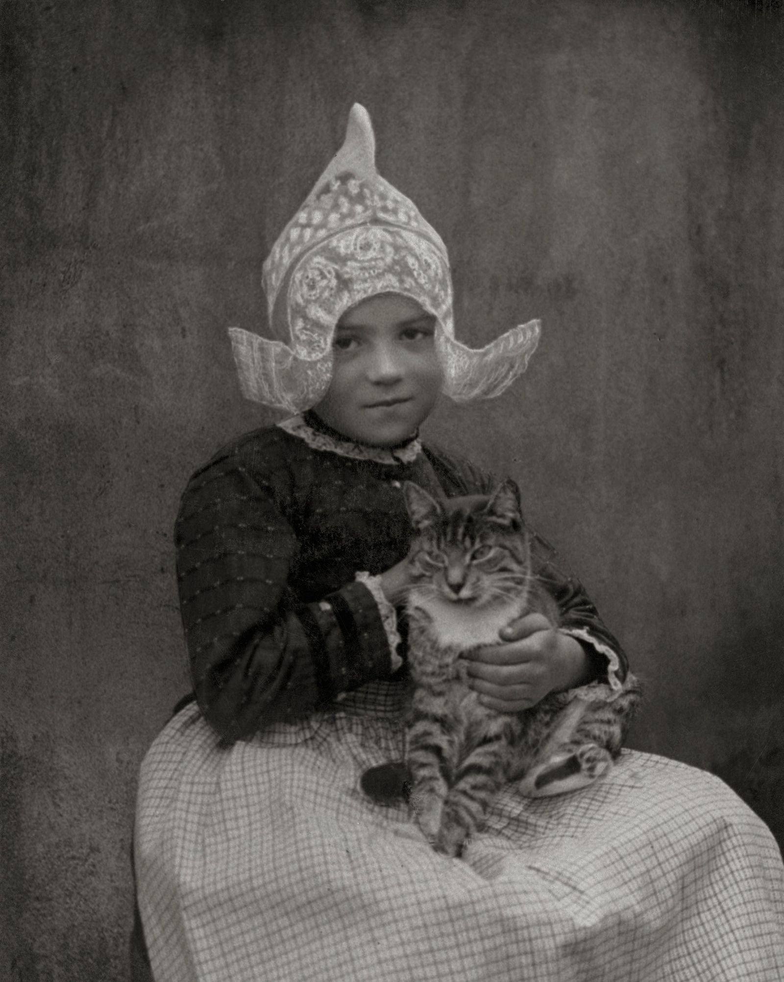 Galerie: Katzen aus aller Welt