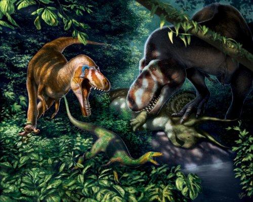 Teenager T. rex: Warum sich Forscher beim Nanotyrannus geirrt haben