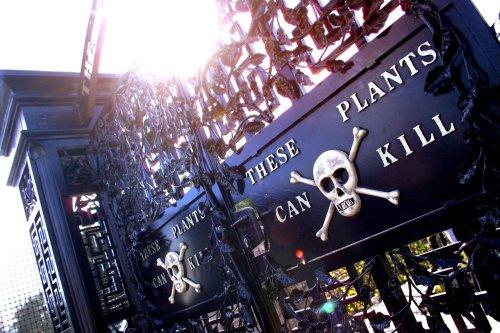 Alnwick Garden: Tödliches Paradies