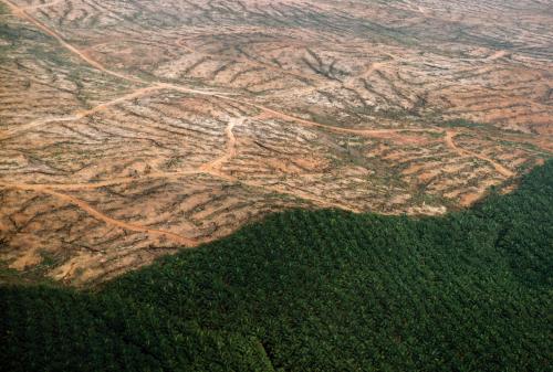 ¿Qué es la COP26 y por qué es tan importante?
