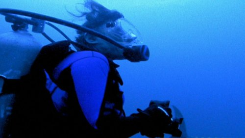 Exploradores de National Geographic: Sylvia Earle