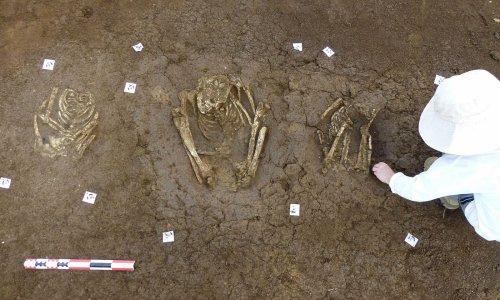 Découverte d'une centaine de sépultures précolombiennes en Guadeloupe