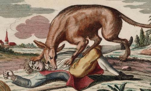 La bête du Gévaudan : 250 ans plus tard, le mystère reste entier