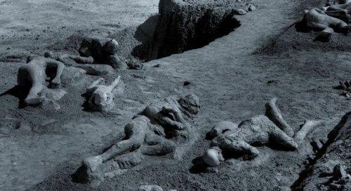 Les fugitifs pétrifiés de Pompéi : qui étaient-ils ?