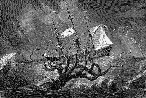 Ces monstres marins ont inspiré écrivains, scénaristes (et chercheurs) à travers les âges