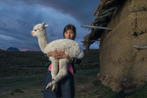 Pourquoi le peuple Chimú sacrifiait-il ses enfants et ses lamas ?