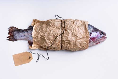 Comment acheter un saumon vraiment respectueux de l'environnement ?