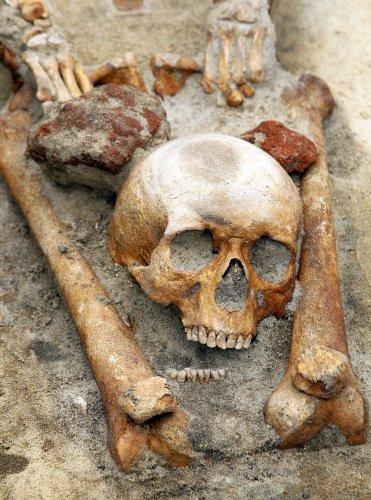 Que sait-on des tombes de vampires présumés découvertes en Pologne ?
