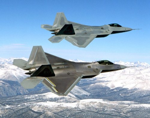 Gentle Giants: How the F-22 Raptor Saved Honey Bees from Destruction