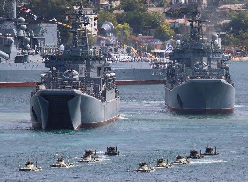 Forget Submarines: The Russian Navy Deploys Combat Seals and Dolphins