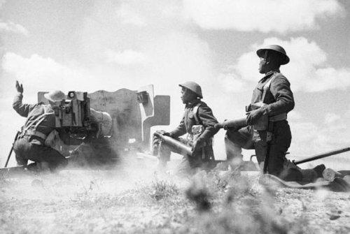 World War II Was a Testing Ground for British Anti-Tank Artillery