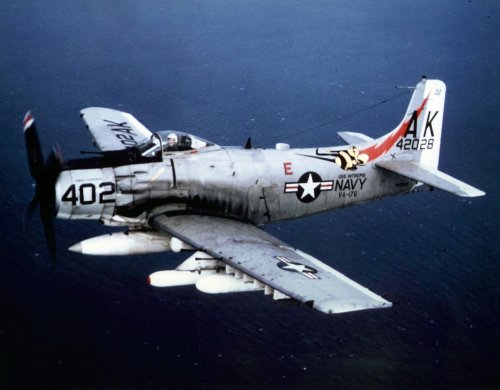 Nazi Germany made a Massive Mistake Attacking an A10