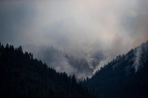 Cooler temperatures and light rain welcomed in B.C. as 250 wildfires burn