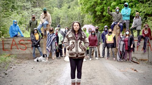 First protesters arrested at Fairy Creek old-growth blockade
