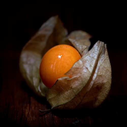 Physalis, cape gooseberry - benefits galore, but not for pregnant women