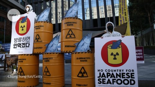 Scientists OK plan to release one million tonnes of waste water from Fukushima nuclear plant