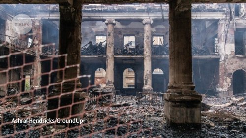 'The damage is total': fire rips through historic South African library and plant collection
