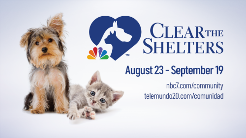 Clear the Shelters Returns to San Diego County for Tail-Wagging Good Time