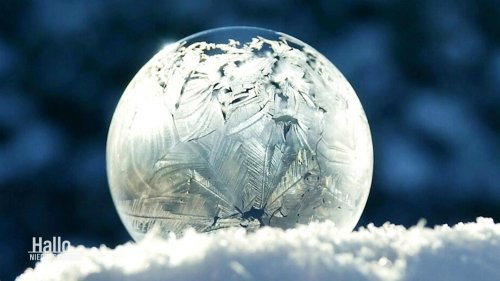 Schnappschuss im Teufelsmoor: Gefrorene Seifenblasen
