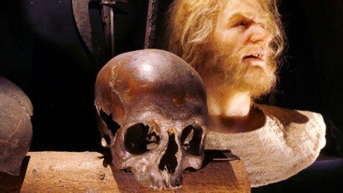 Der sagenumwobene Tod des Piraten Klaus Störtebeker