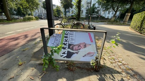 Bundestagswahl: Zerstörte Wahlplakate in Hamburg
