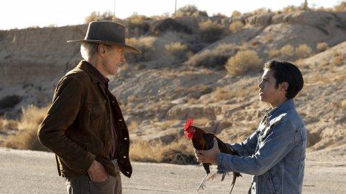 "Abrechnung mit dem Machismo: Clint Eastwoods ""Cry Macho"""