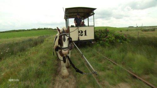 Historische Pferdebahn auf Spiekeroog wieder im Einsatz