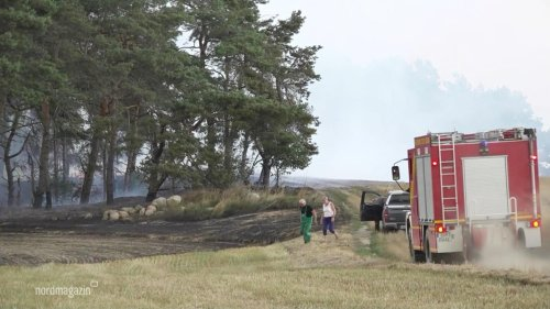 17 Hektar Feld und Wald brennen auf Usedom ab