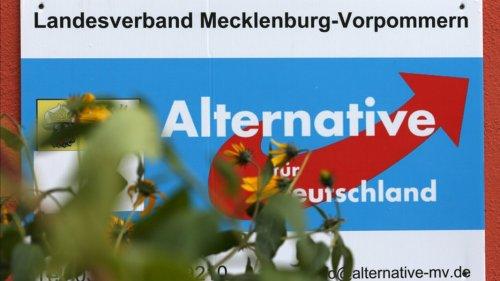 AfD: Klimaschutz durch Kernenergie