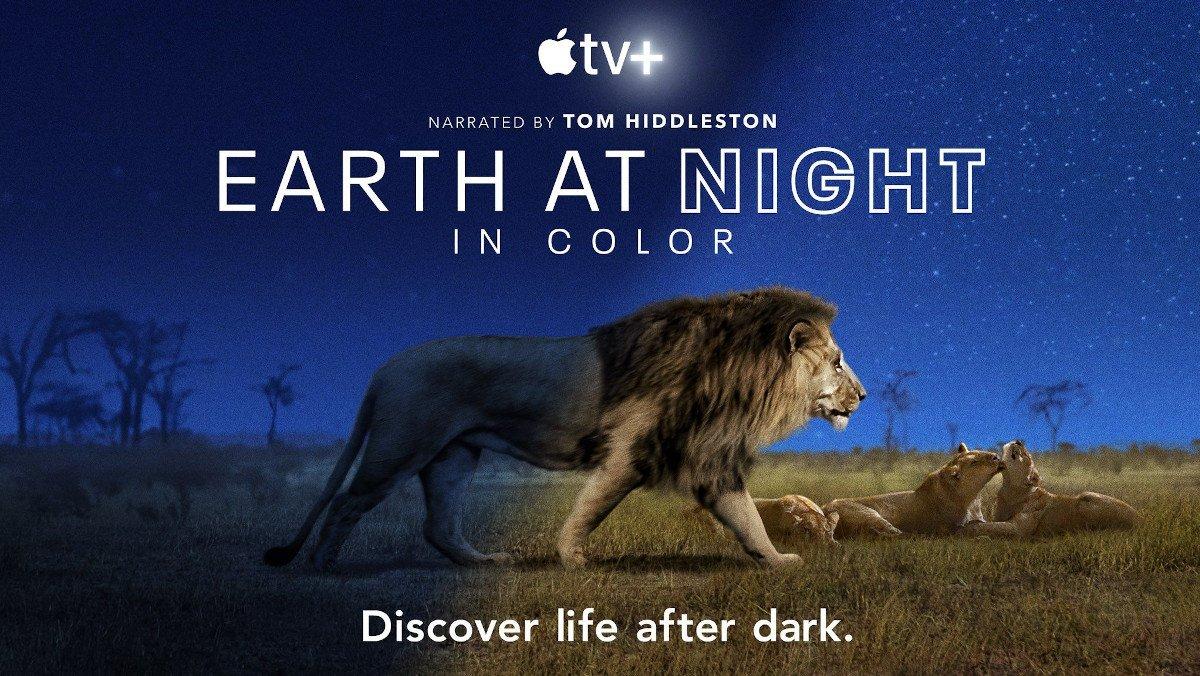 Tom Hiddleston Makes Nature Sound Sexy in EARTH AT NIGHT IN COLOR Clip - Nerdist