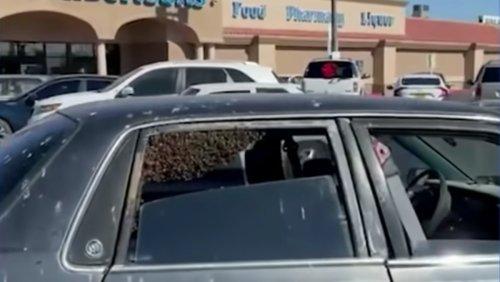15,000 Bees Swarm Man's Car During Grocery Shopping Trip - Nerdist