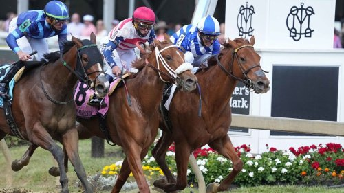 Sign Up For Preakness Stakes Challenge To Play For $100 Gift Card - NESN.com