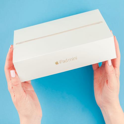 iPad Mini der 6. Generation (2021) – Passt die kompakte Technik zu jedem? - Netzpiloten.de