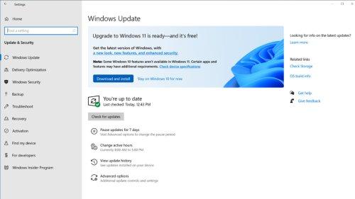Windows 11: Microsoft bereitet den Rollout vor
