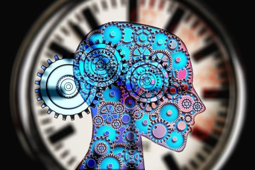 Perceptual Distortions in Late-Teens Predict Psychotic Symptoms in Mid-Life
