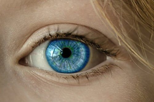 People's Eyes Reveal That Clichés Are Underrated - Neuroscience News