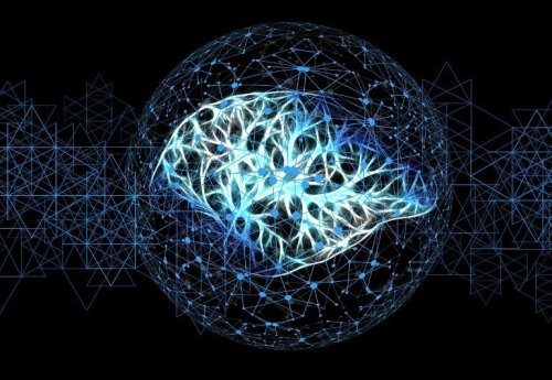 Engineered Nk Cells Can Eliminate Glioblastoma Stem Cells - Neuroscience News